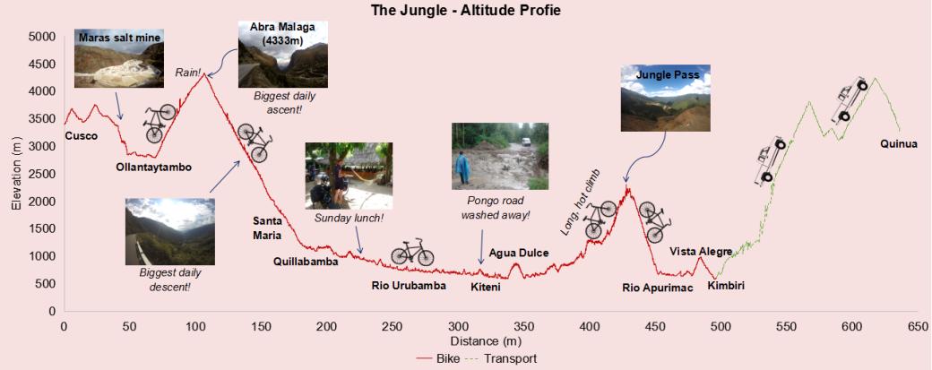 4-the-jungle-_ap