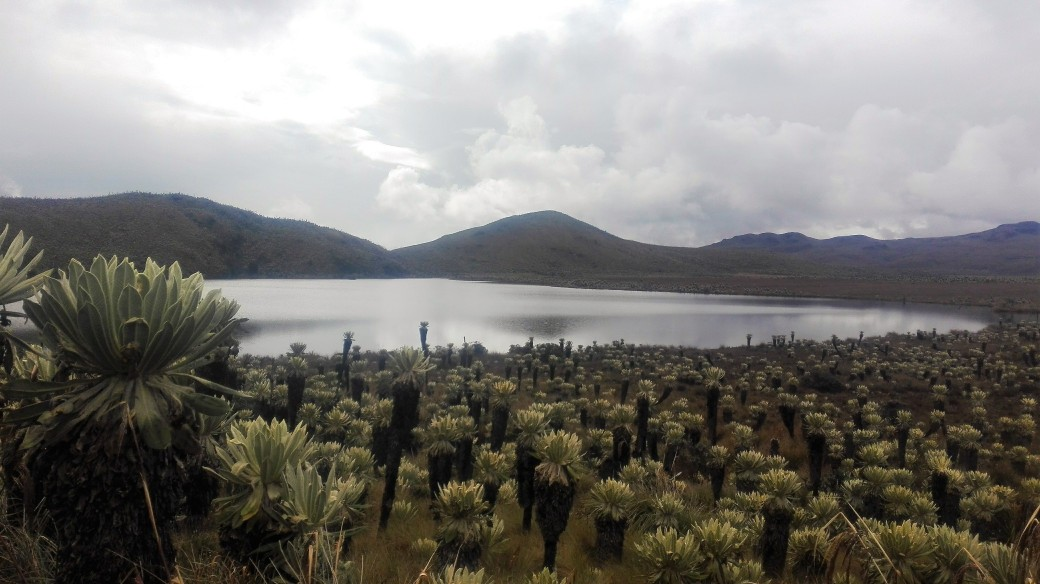 quito-to-colombia-23